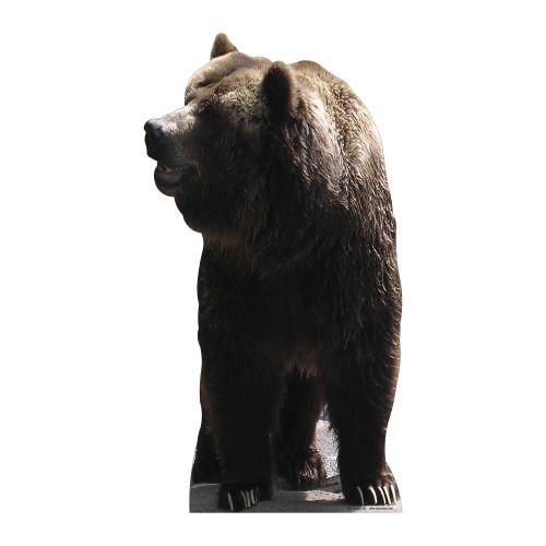 Bear Cardboard Cutout